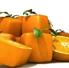 laranjacriativa