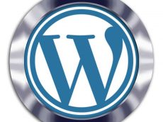 formação wordpress